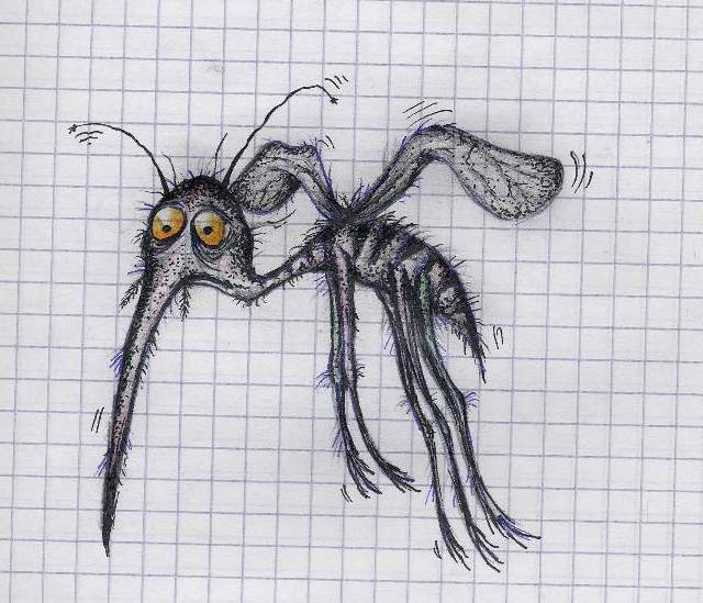 О. Комар КАЙФОЛОМ, обитает в кустах парков и уединённых районов.