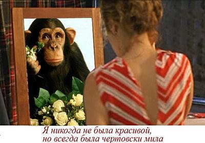 http://img0.liveinternet.ru/images/attach/b/3/29/378/29378305_O_krasote.jpg