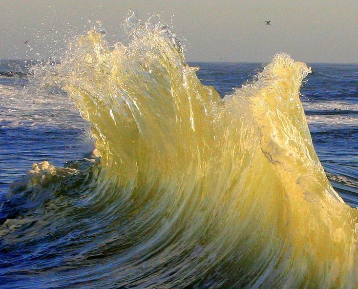 экзотический. и море! картинки. хочу туда и скоро буду! море. отдых в таиланде.