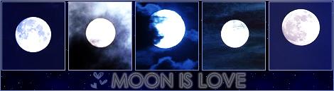Излавки 3715748_3182374_moon_is_love