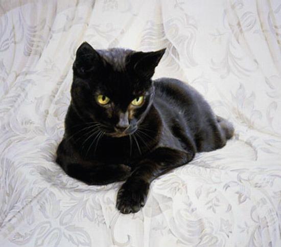 """Схема вышивки  """"Черный кот """" ."""