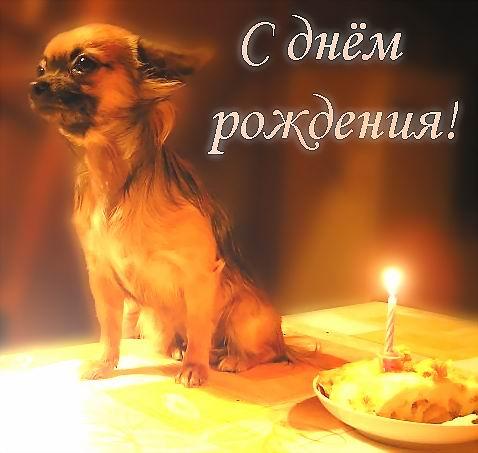 Поздравления боевого товарища с днем рождения