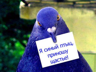 3563029_kartinki_41_36 (400x300, 35Kb)