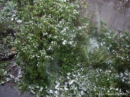 Октябрь 2007: Первый снег