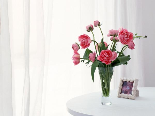 http://img0.liveinternet.ru/images/attach/b/3/41/288/41288872_1237554691_flower_00892.jpg