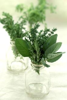 Комары так же, как и мы, чутко реагируют на ароматы.  Но в отличие от нас, терпеть не могут запах гвоздики.