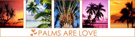 PALMS ARE LOVE (470x129, 54Kb)