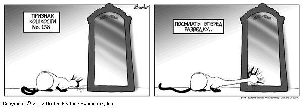 priznak_koshkosti_28 (600x214, 24Kb)