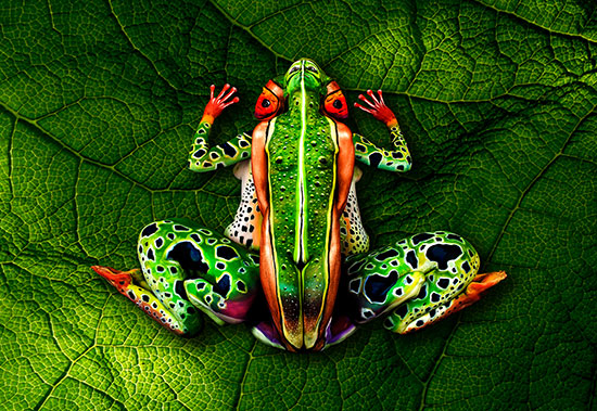5148030_frogjohannesstoetterbodypainting (550x379, 121Kb)