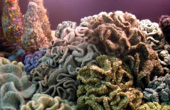 Coral-Crochet-Exhibit (580x376, 165Kb)