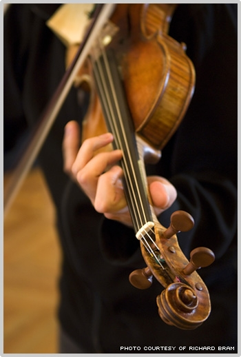лебедь и  скрипка (350x518, 100Kb)