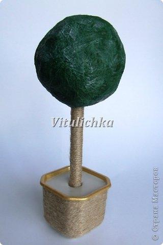 денежное дерево (18) (320x480, 57Kb)