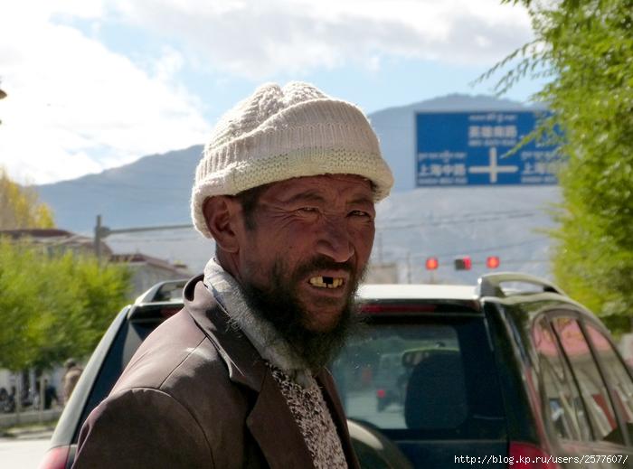 тибетец (700x519, 241Kb)