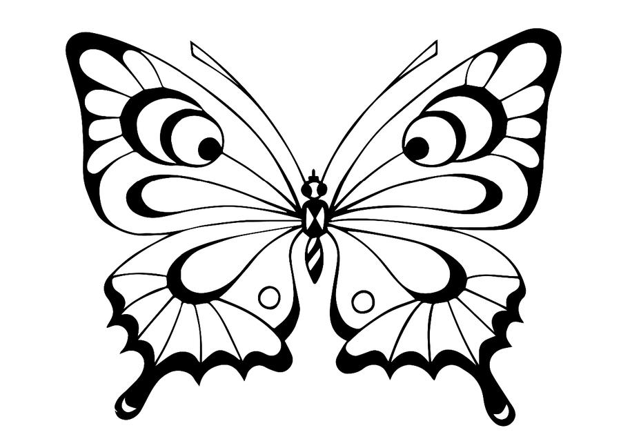 Раскраска бабочки для детей - 8