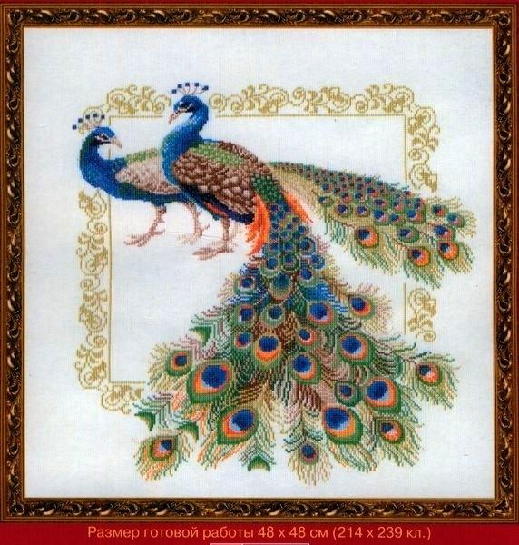 Набор для вышивания Риолис Павлины (48х48 см). Павлины - набор для вышивания крестиком.