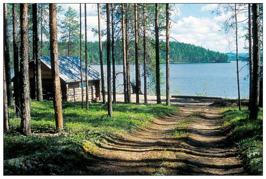 excursion_tours_rossia_karelia_karelia_trip_130918 (526x353, 121Kb)