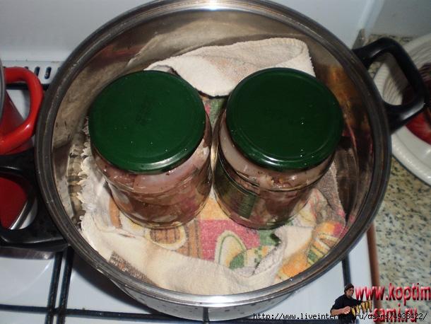 К варить тушенку в домашних условиях