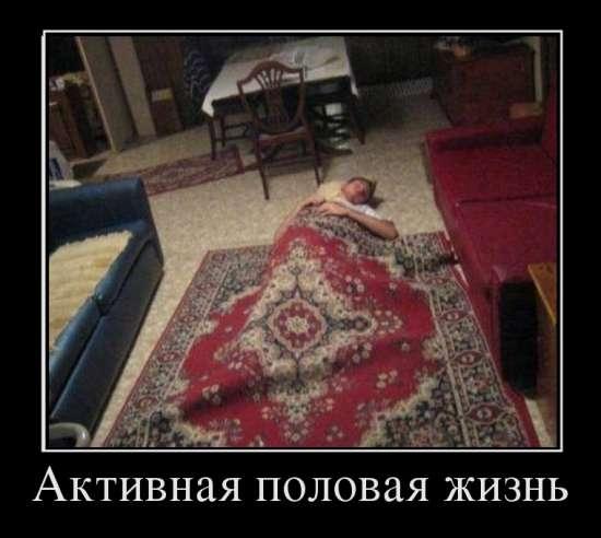 1335370963_prikol_polovaya_zhizn (550x492, 100Kb)