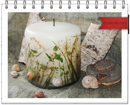 Свечи с засушенными цветами/3518263__1_ (434x352, 257Kb)