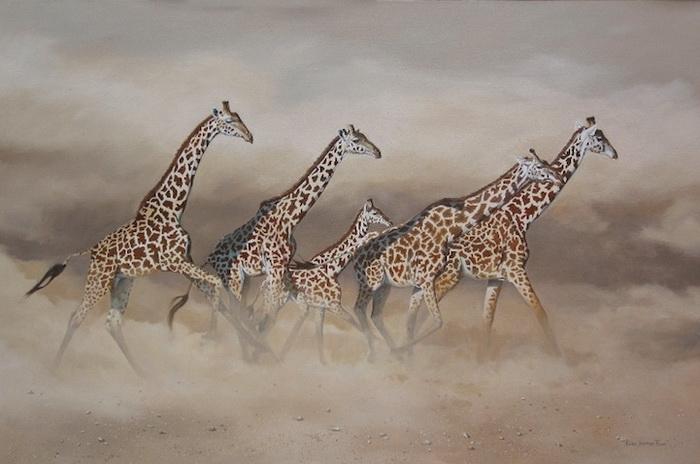 дикая пирода африки Karen Laurence-Rowe 1 (700x464, 176Kb)