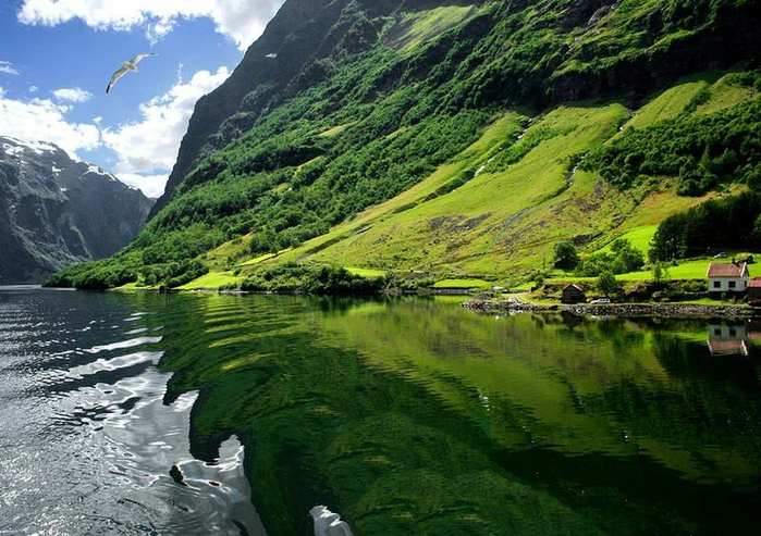 fjords01 (700x493, 445Kb)