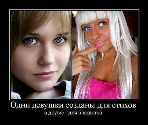 4524271_9b0320358d9b8d03c9cd142698b678af_b (480x405, 33Kb)