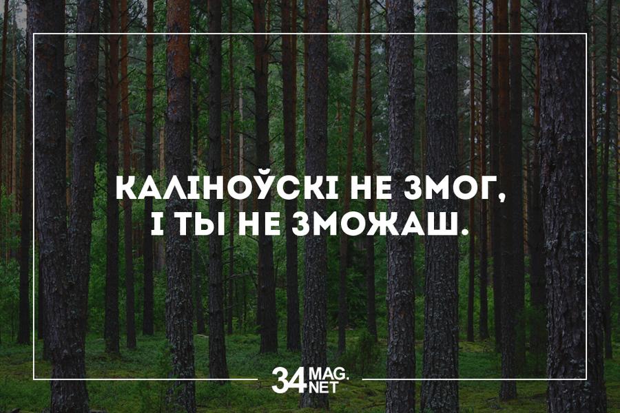 http://img0.liveinternet.ru/images/attach/b/4/103/132/103132032_large_08_34.jpg