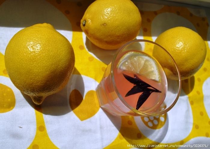 лимонад3 (700x496, 242Kb)