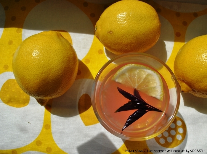 лимонад4 (700x521, 270Kb)