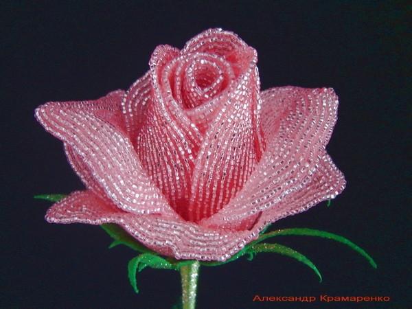 Французские розы из бисера от Александра Крамаренко (5) (600x450, 192Kb)