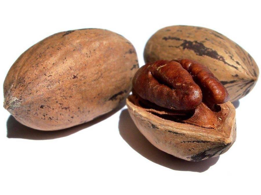 какие орехи можно при высоком холестерине