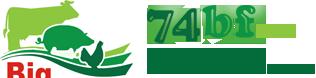 bg_logo (316x78, 21Kb)