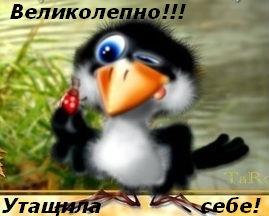 74773986_Velikolepno_utaschila_sebe_karkusha (269x216, 16Kb)
