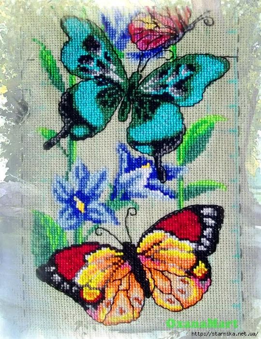 бабоч (540x700, 452Kb)
