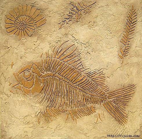1Fossils_2 (490x482, 277Kb)