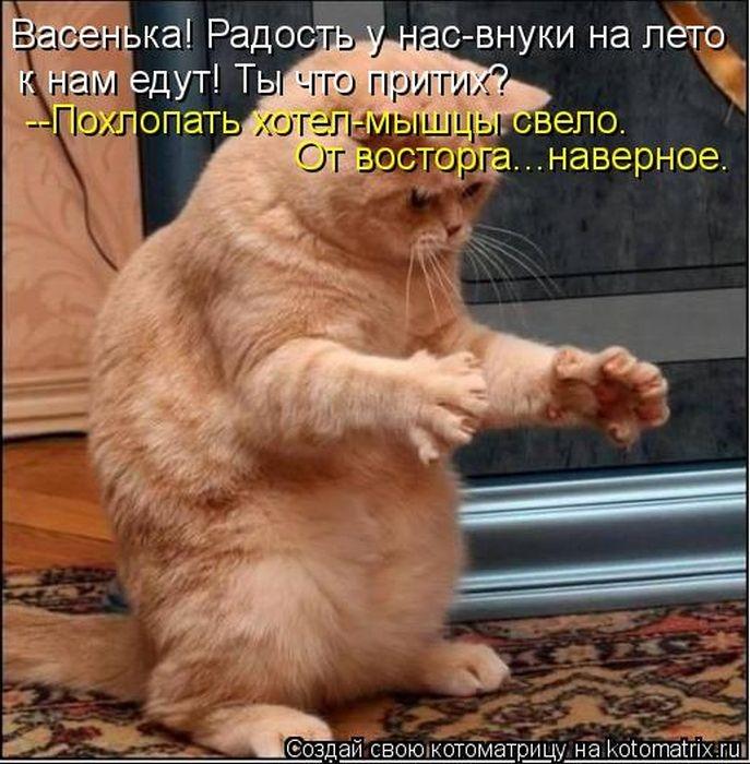 1374323494_kotomatrix_06_1 (687x700, 253Kb)