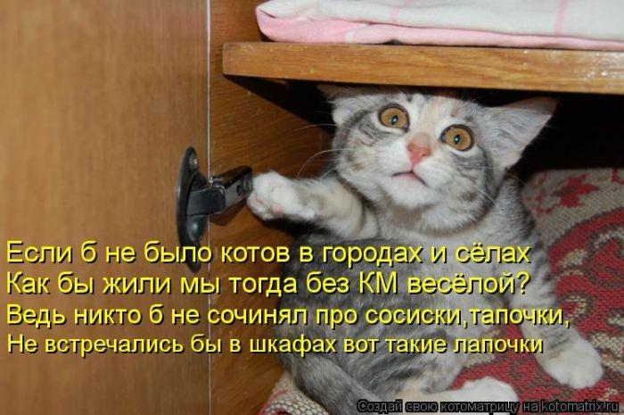 http://img0.liveinternet.ru/images/attach/b/4/103/248/103248542_1374323579_kotomatrix_41_1.jpg