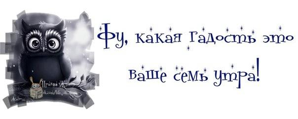 1374518963_frazki-16 (604x242, 50Kb)