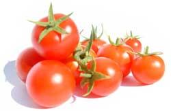 tomato-160713 (250x163, 4Kb)