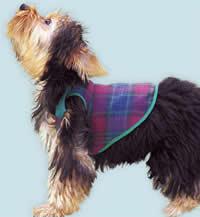 Шьем одежку для собачки. Выкройка (3) (200x217, 21Kb)