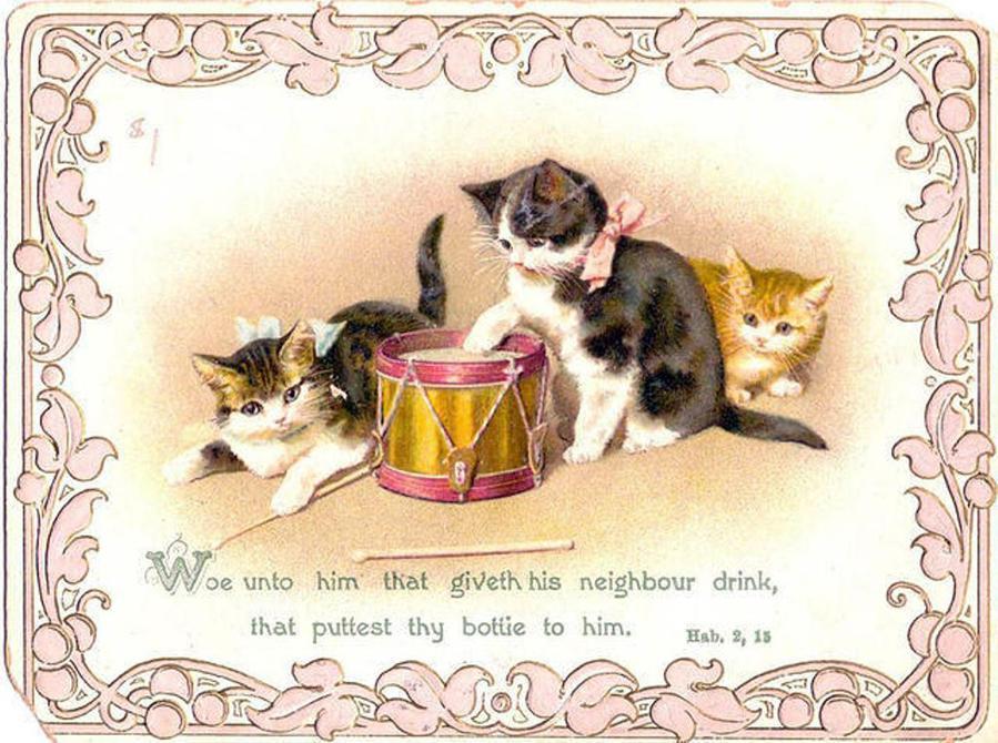 Открытки с кошка с котятами 62