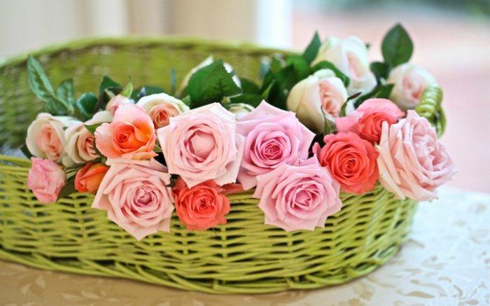 Скачать розы, бутоны, корзина, фото, обои, картинка #426365 - KinoLife