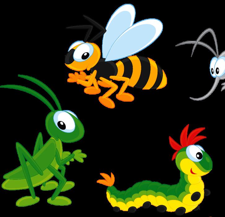 Клипарт нашествие насекомых фото 449-277
