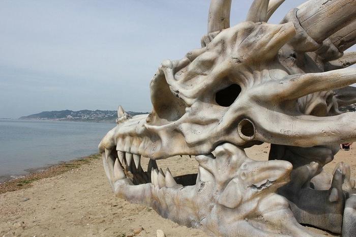 череп дркона в англии фото 5 (700x466, 235Kb)