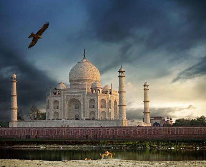 Вид на Тадж-Махал, Агра, Индия (700x567, 308Kb)