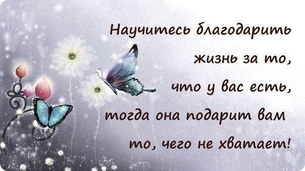 5107888_kpekyf_1_ (604x340, 80Kb)