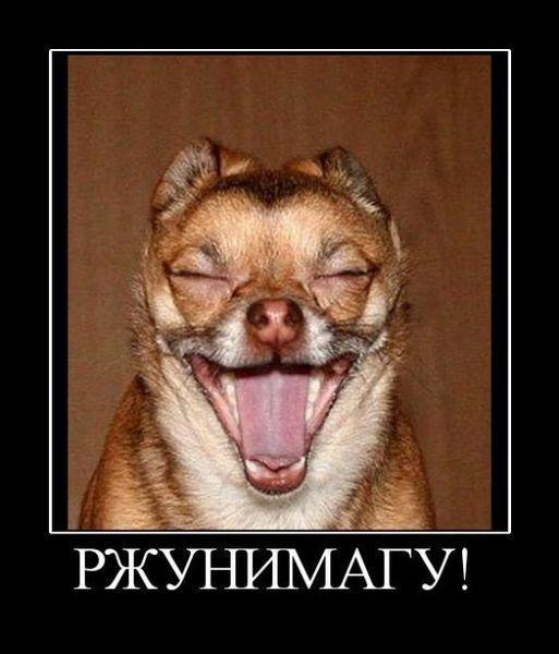 смайлик ржу: