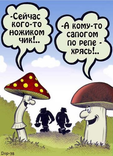 Метки про грибы анекдоты приколы юмор