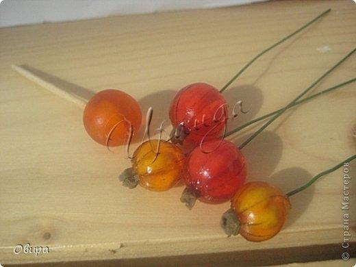 Красная смородина из ювелирной эпоксидной смолы (39) (520x390, 80Kb)