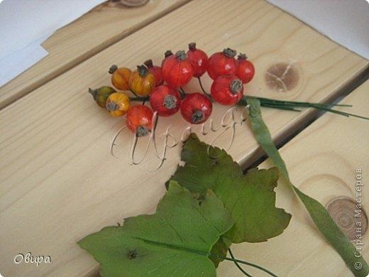 Красная смородина из ювелирной эпоксидной смолы (47) (520x390, 91Kb)